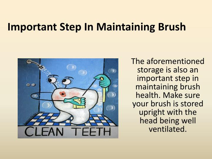 Important Step In Maintaining Brush