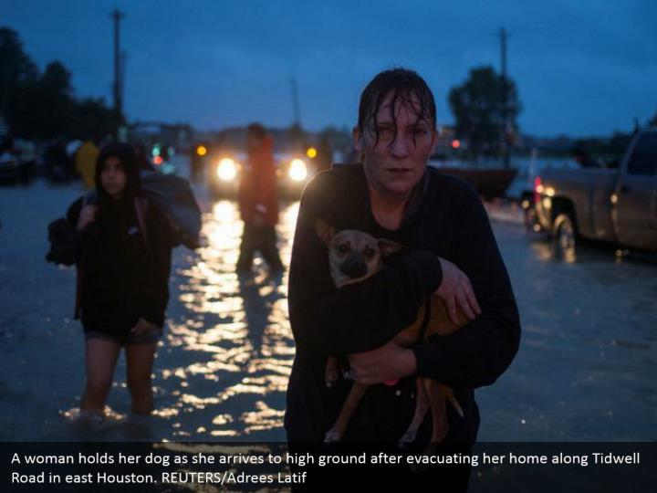 A woman holds her dog as she arrives to high ground after evacuating her home along Tidwell Road in east Houston. REUTERS/Adrees Latif