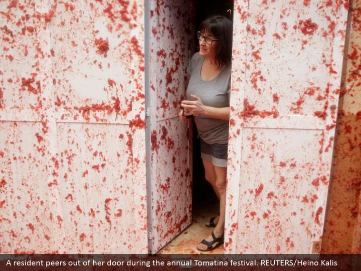 A resident peers out of her door during the annual Tomatina festival. REUTERS/Heino Kalis