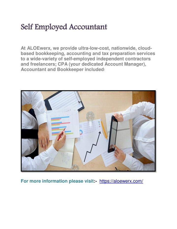 Self Employed Accountant