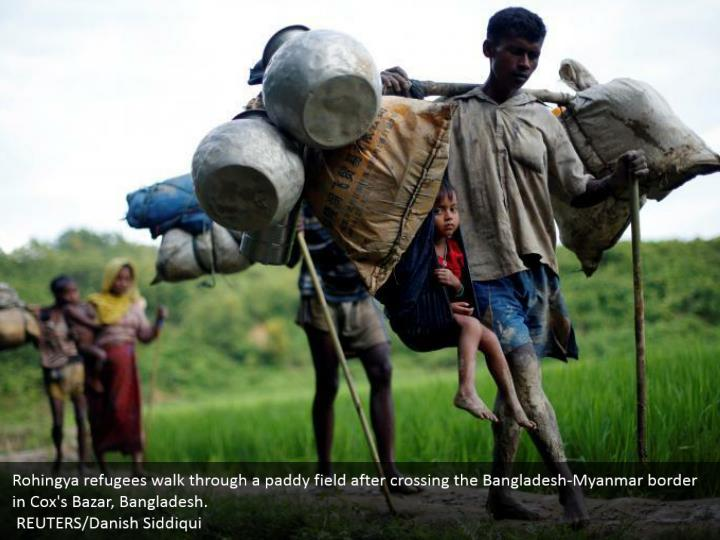 Rohingya refugees walk through a paddy field after crossing the Bangladesh-Myanmar border in Cox's Bazar, Bangladesh.  REUTERS/Danish Siddiqui