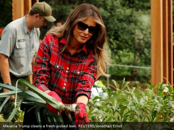 Melania Trump cleans a fresh-picked leek. REUTERS/Jonathan Ernst