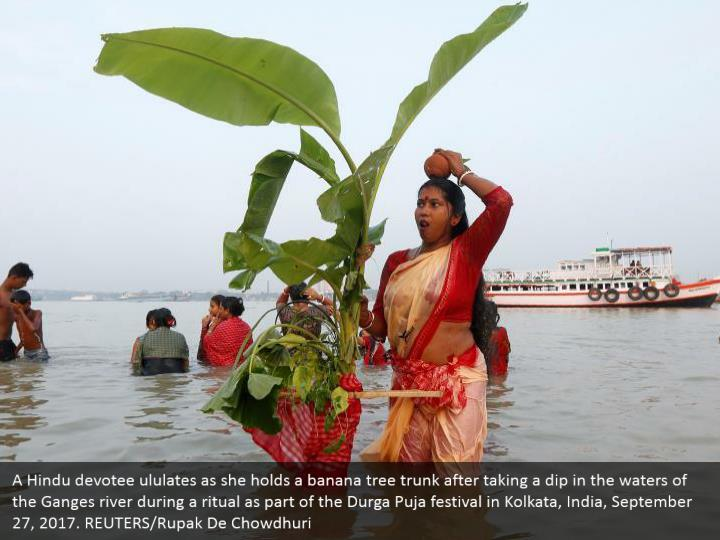 A Hindu devotee ululates as she holds a banana tree trunk after taking a dip in the waters of the Ganges river during a ritual as part of the Durga Puja festival in Kolkata, India, September 27, 2017. REUTERS/Rupak De Chowdhuri