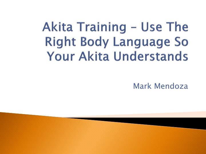 akita training use the right body language so your akita understands n.