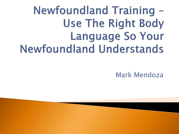 newfoundland training use the right body language so your newfoundland understands n.