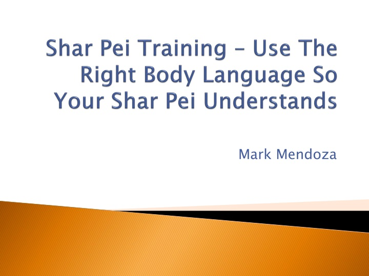 shar pei training use the right body language so your shar pei understands n.