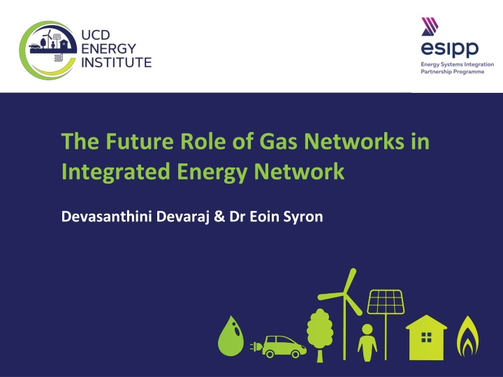 the future role of gas networks in integrated n.