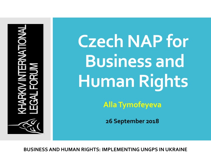 czech nap for business and human rights n.
