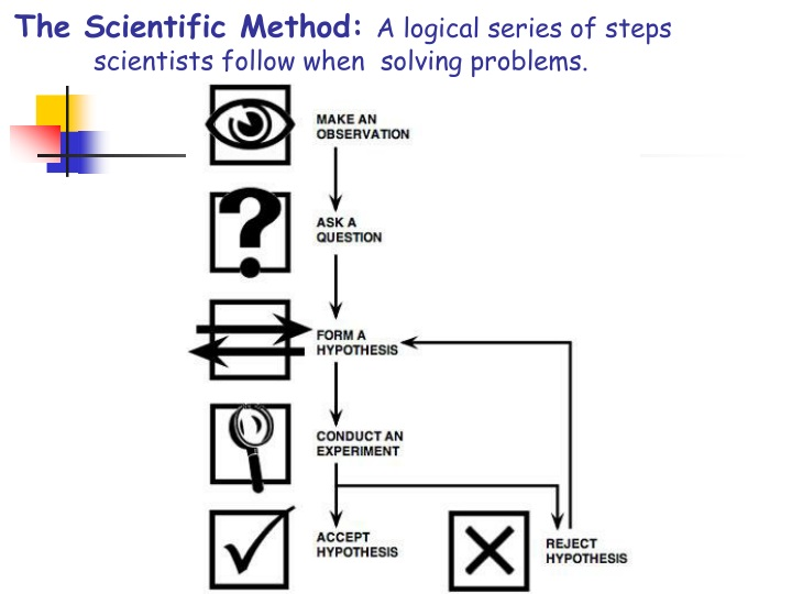 the scientific method a logical series of steps scientists follow when solving problems n.