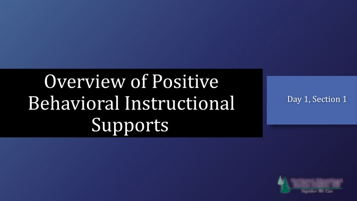 overview of positive behavioral instructional supports n.