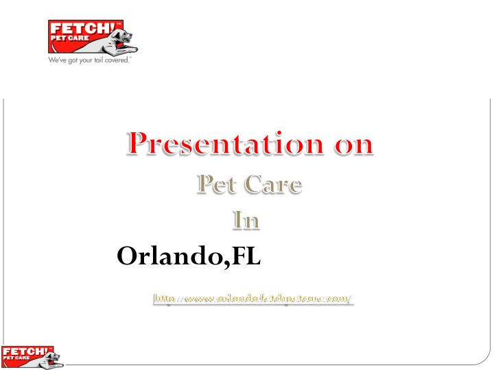 presentation on pet care in orlando fl http n.