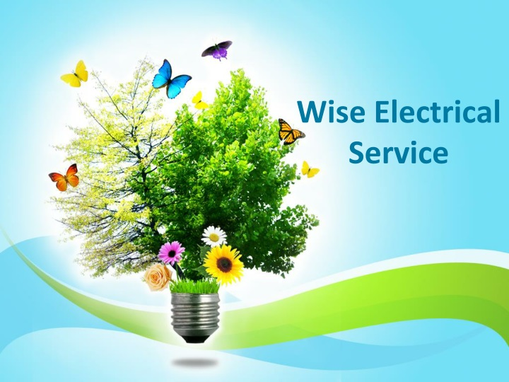 wise electrical service n.