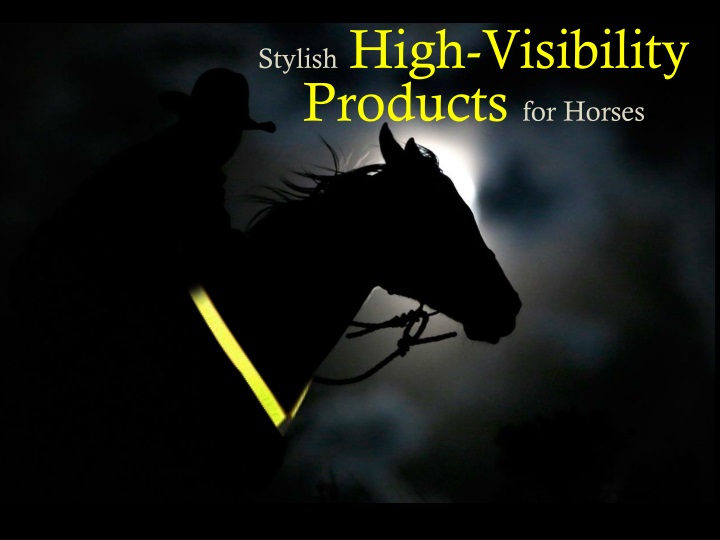 stylish high visibility products for horses n.