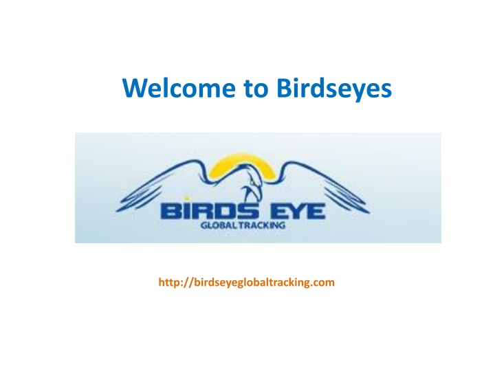 welcome to birdseyes n.