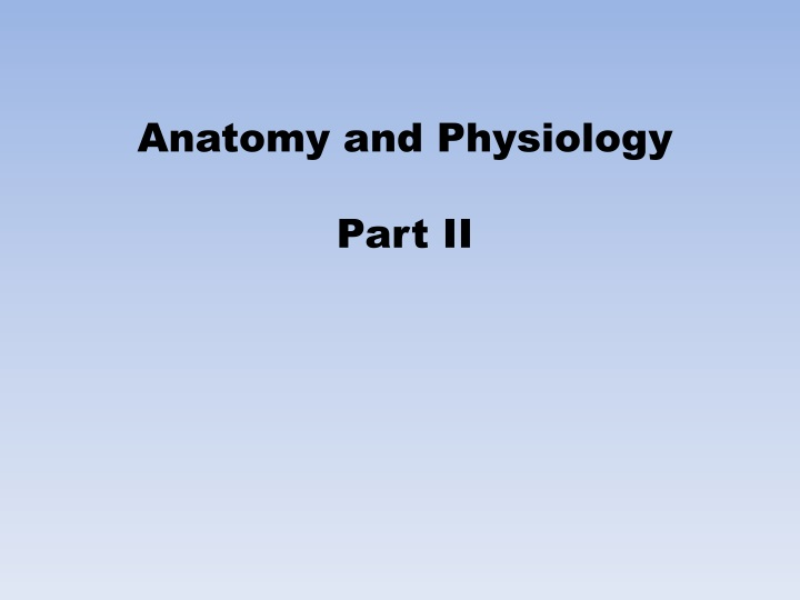 anatomy and physiology part ii n.