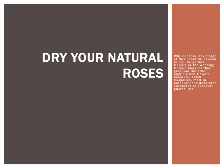 dry your natural roses n.