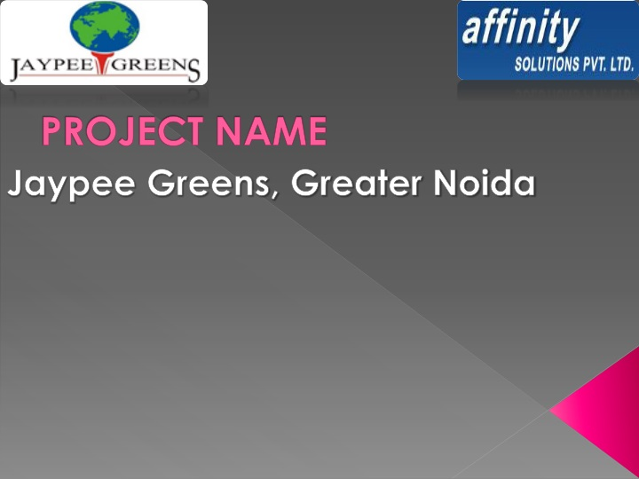 project name n.