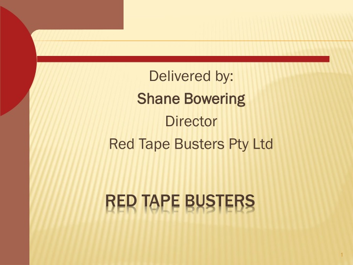 red tape busters n.