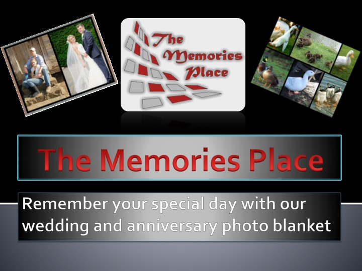 the memories place n.