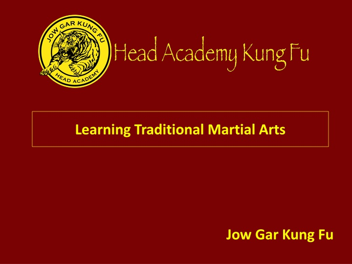 learning traditional martial arts n.