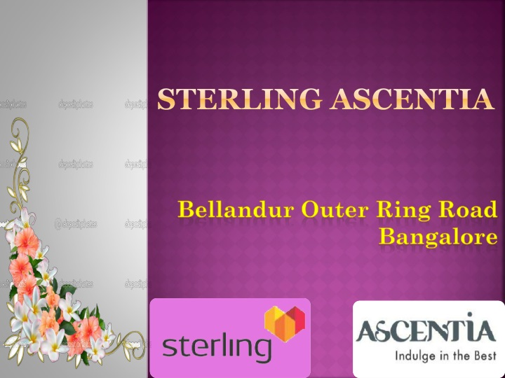 sterling ascentia n.