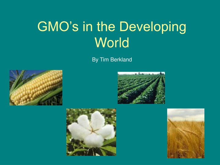 gmo s in the developing world n.