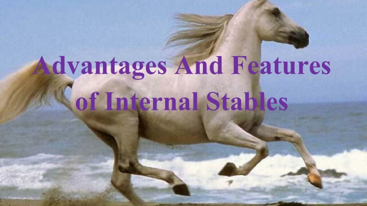 advantages and features of internal stables n.