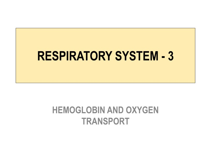 respiratory system 3 n.