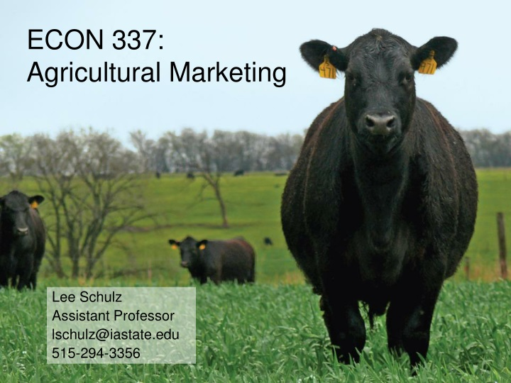 econ 337 agricultural marketing n.