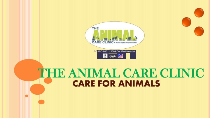 care for animals n.