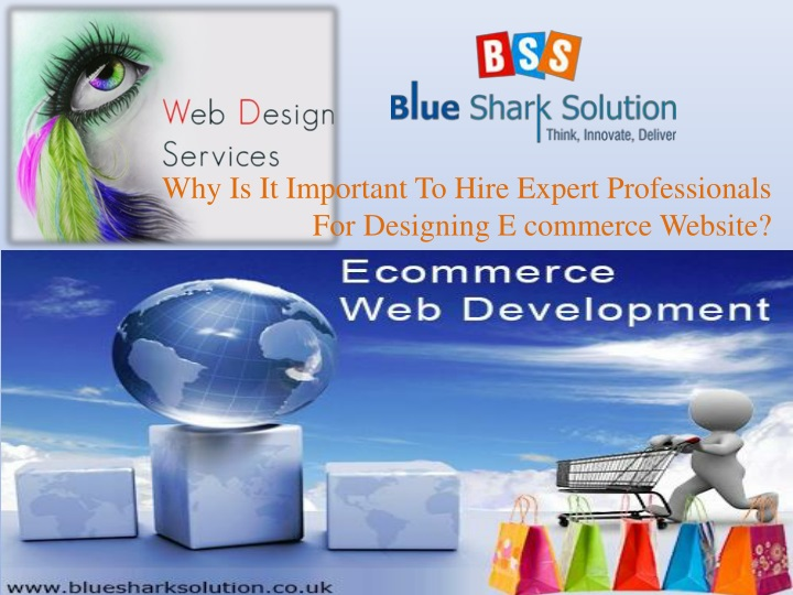 why is it important to hire expert professionals for designing e commerce website n.