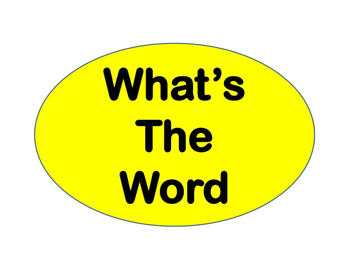 what s the word n.