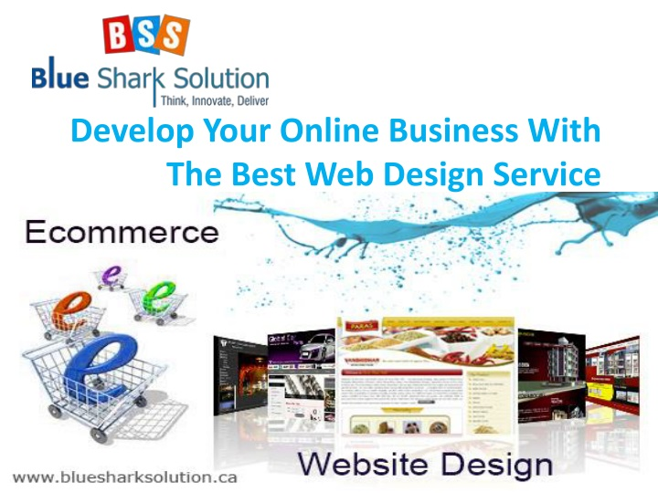 develop your online business with the best n.