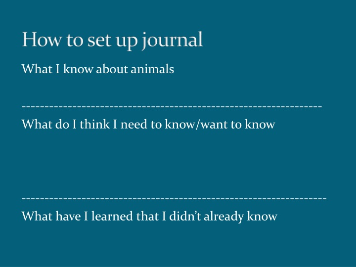 how to set up journal n.