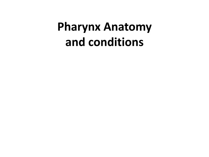 pharynx anatomy and conditions n.