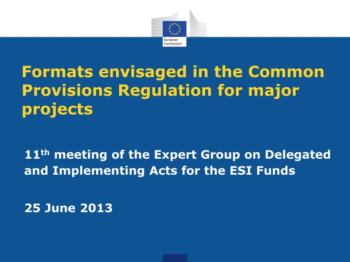 formats envisaged in the common provisions regulation for major projects n.