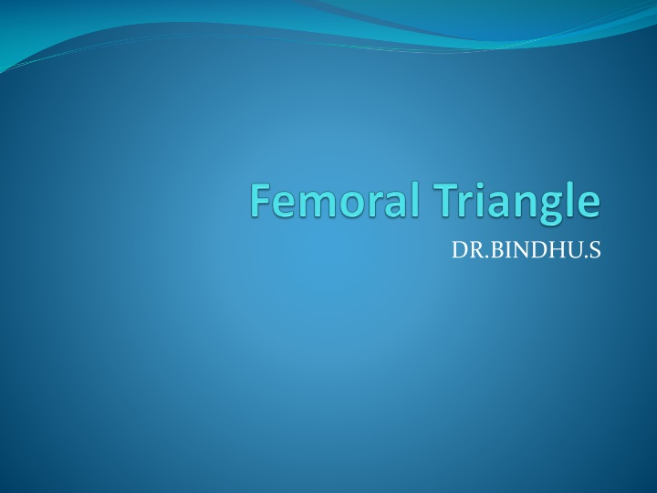 femoral triangle n.