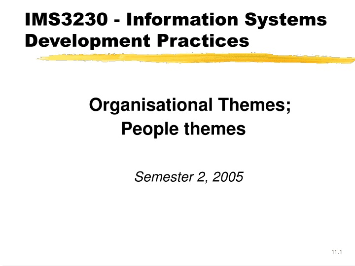 ims3230 information systems development practices n.