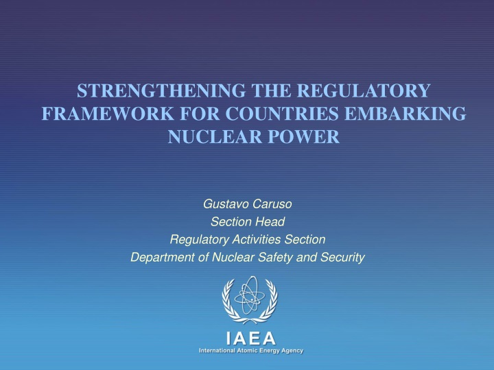 gustavo caruso section head regulatory activities section department of nuclear safety and security n.
