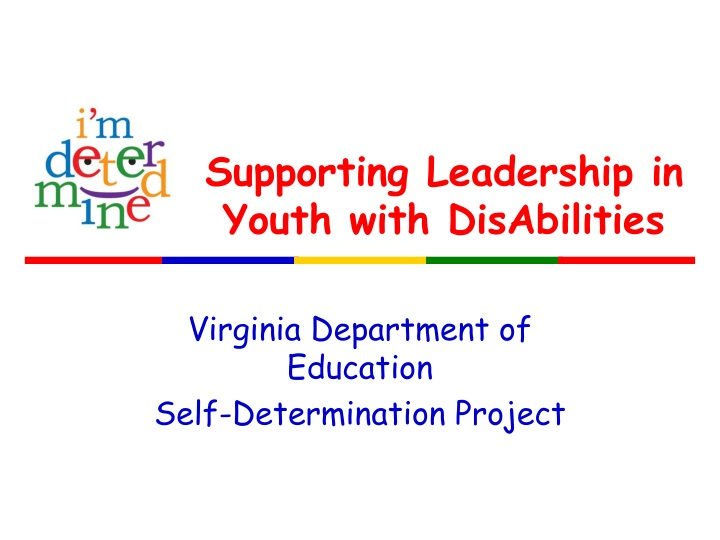 supporting leadership in youth with disabilities n.