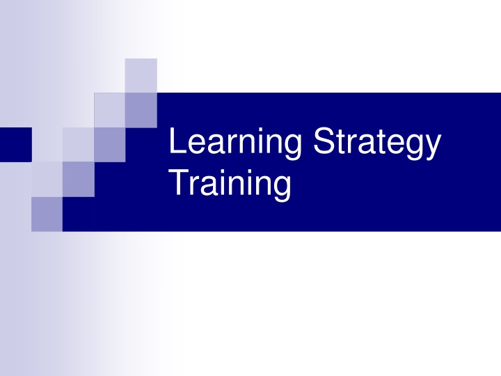 learning strategy training n.