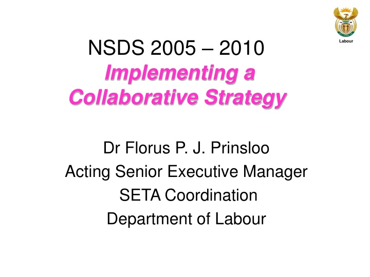 nsds 2005 2010 implementing a collaborative strategy n.