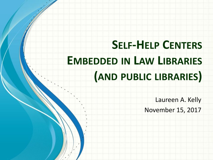 self help centers embedded in law libraries and public libraries n.