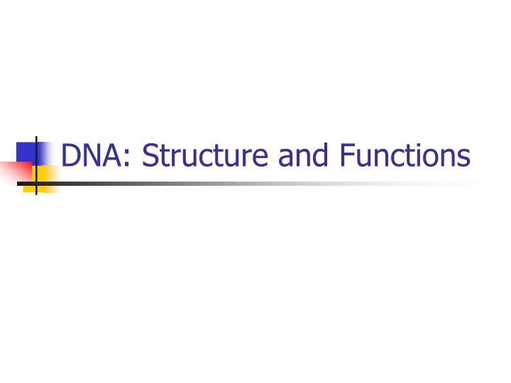 dna structure and functions n.