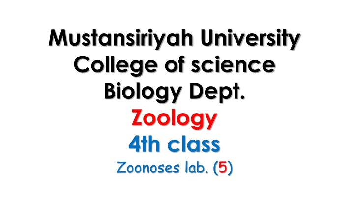 mustansiriyah university college of science n.