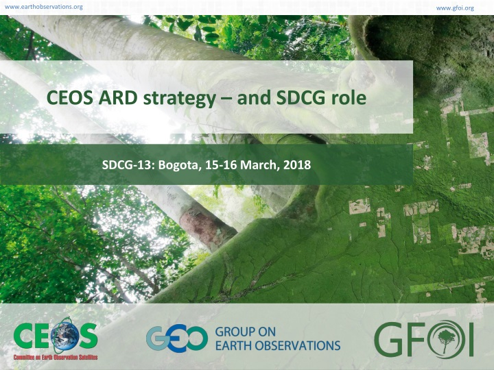 ceos ard strategy and sdcg role n.