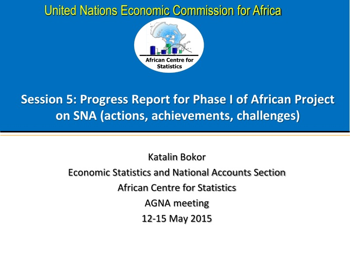 session 5 progress report for phase i of african project on sna actions achievements challenges n.