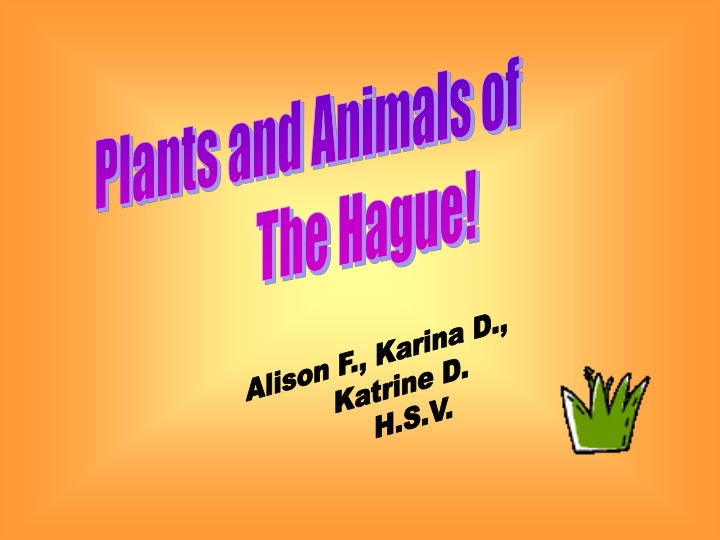 plants and animals of the hague n.