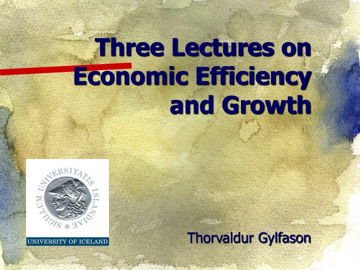 three lectures on economic efficiency and growth n.
