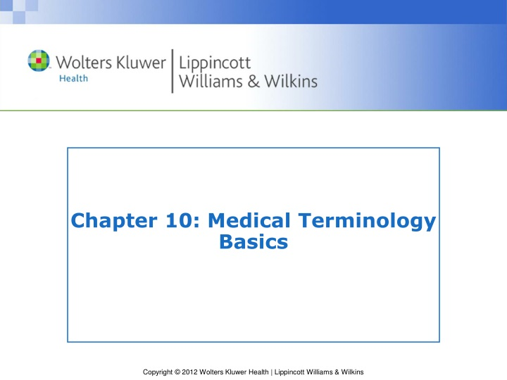 chapter 10 medical terminology basics n.